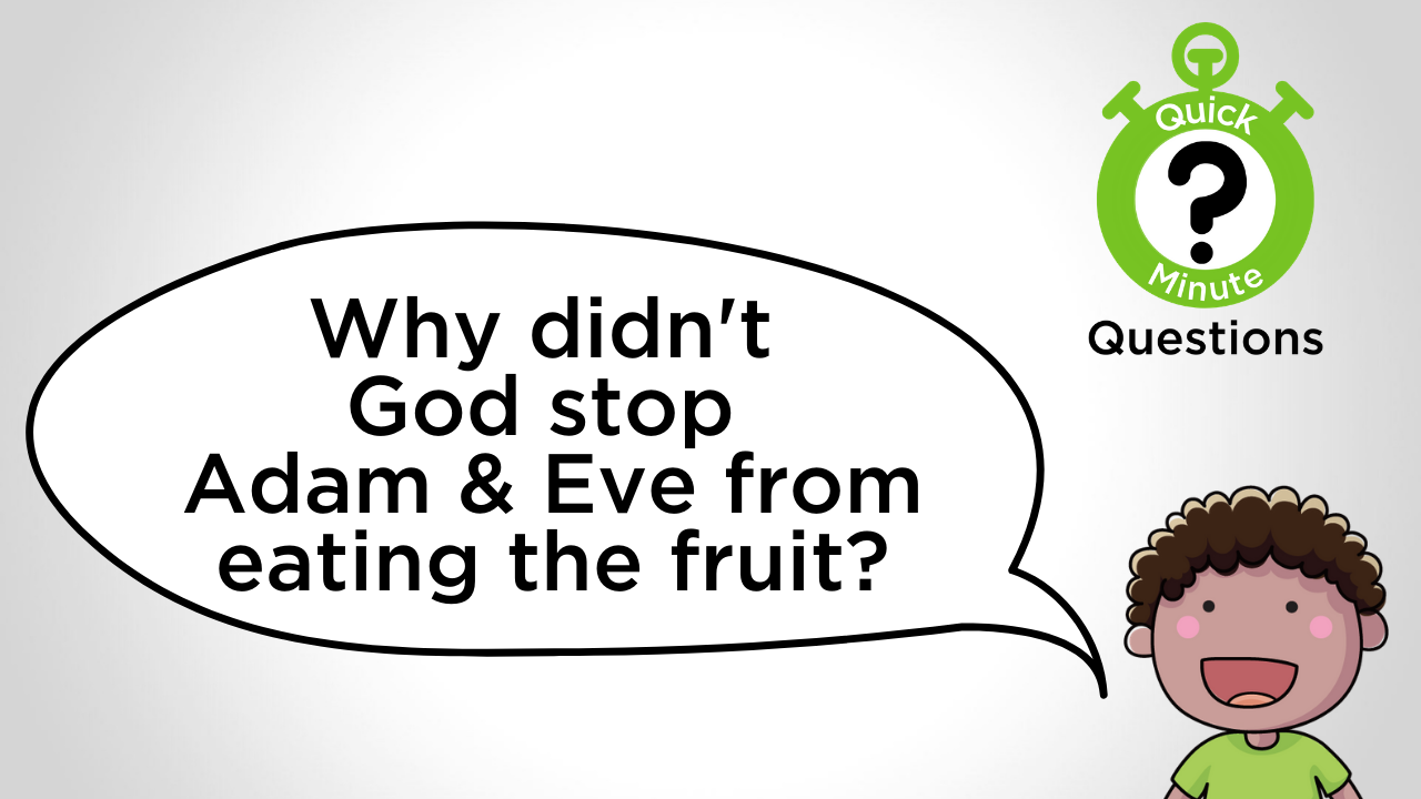 Why didn't God stop Adam and Eve
